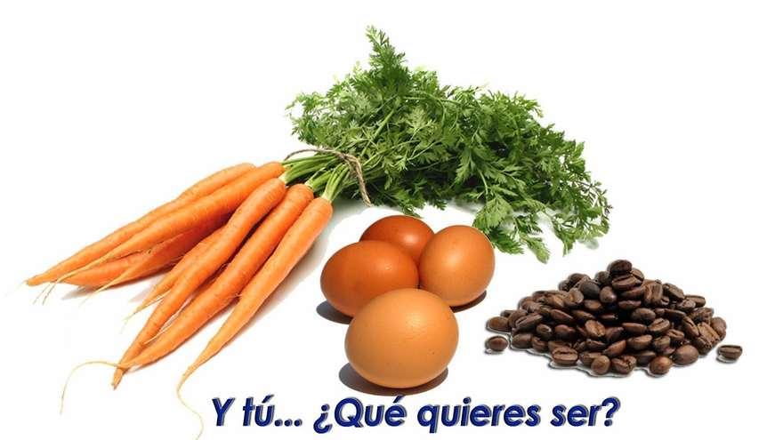 moraleja zanahoria-huevos-y-cafe